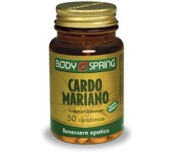 Body Spring Cardo Mariano