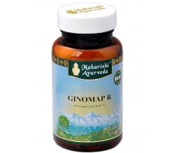 Ginomap 60 compresse da 500 mg