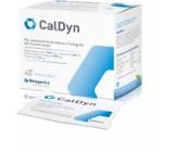 CalDyn con Calcio Magnesio vitamine K2 e D 21 bustine